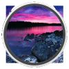 Перенос сайта WordPress с utf8mb4 на utf8